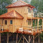 Bijzonder overnachten in een boomhut in Anderen Drenthe