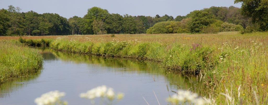 Geniet van de natuur en bezienswaardigheden in de omgeving Anderen Drenthe.