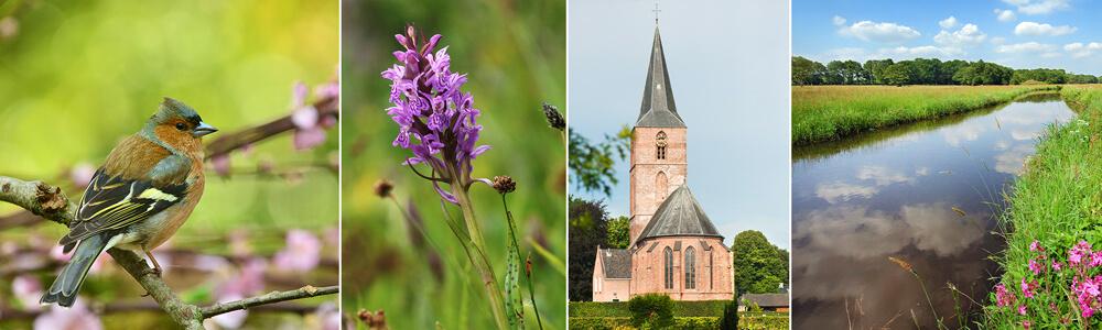 Anderen Drenthe, sfeervol en natuurrijk